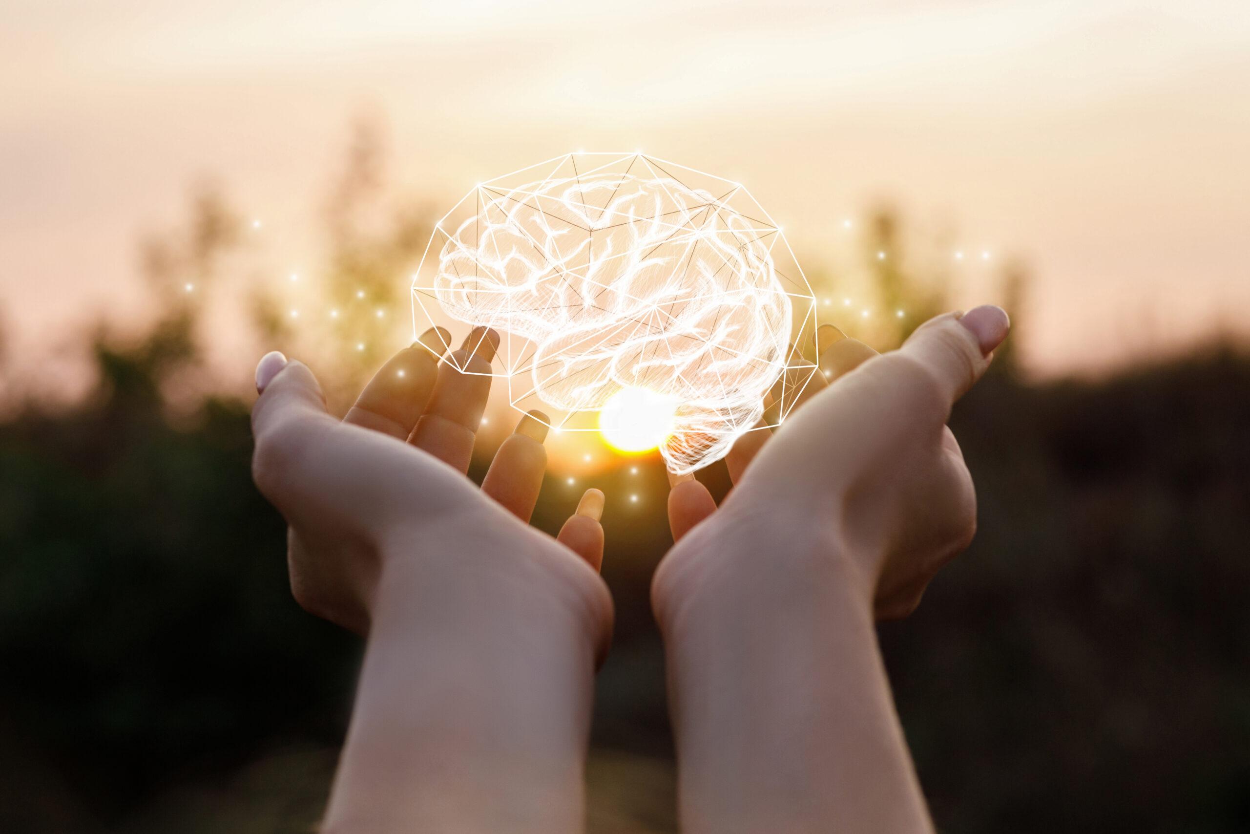 Positive Neuroplastizitaet das Gute Aufnehmen